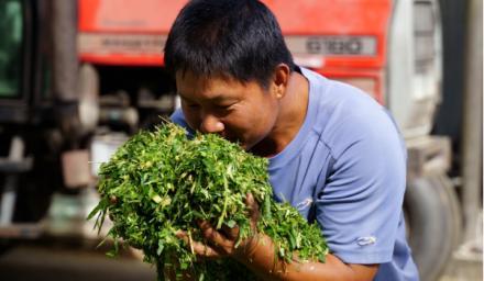 從動物福利到在地共榮!酪農廖皎邦的牧場改革之路