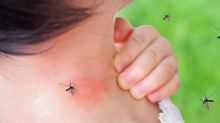 Michigan is latest state to warn residents of deadly mosquito-borne virus, following 3 possible human cases