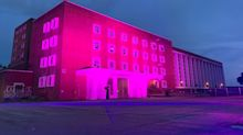 LGBTQ-friendly businesses light up in pink in support of Pink Dot rally