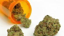 Tilray reports lower pot prices, tighter margins