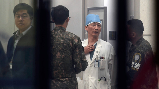 Large parasites found in North Korean soldier's body