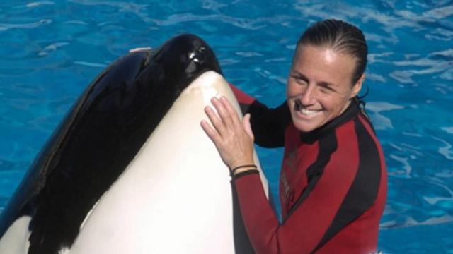 Nightline 06/21: Should 'Killer Whales' Be Tourist Attractions?