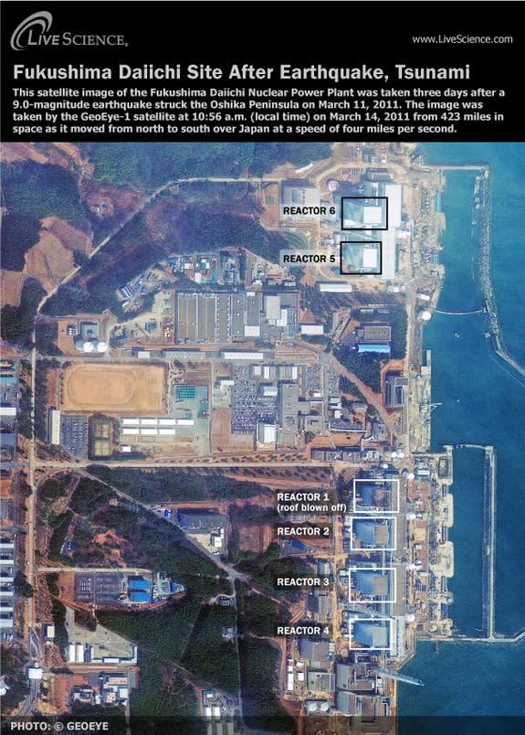 Fukushima Radiation Leak: 5 Things You Should Know