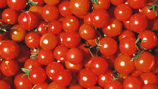 How Ford and Heinz Will Make Cars Out of Tomatoes This Summer