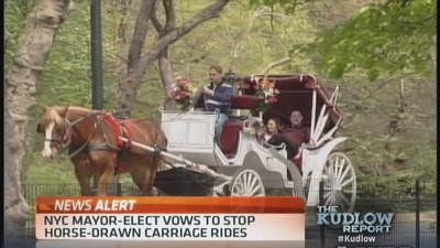 NYC Mayor-Elect vows to stop horse-drawn carriages