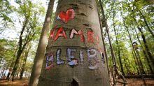 BUND will Hambacher Forst in NRW-Stiftung überführen