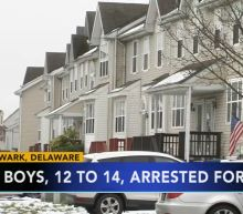 4 boys, ages 12 to 14, arrested for rape in Delaware
