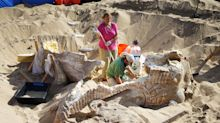 The strange tale of the lost California sphinx