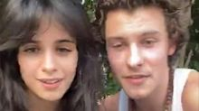 Shawn Mendes and Camila Cabello Reveal They Are Social Distancing Together During Instagram Concert