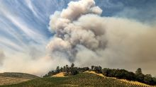 Incendios en EEUU dejan un sabor a humo en los viñedos