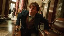 Fantastic Beasts and Where to Find Them is now a five film franchise