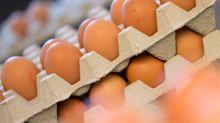 Aldi hebt Eierpreise an - weitere Händler dürften folgen
