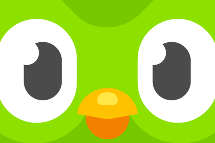 Why Does The Duolingo Owl Scare Me More Than My High School Spanish Teacher Ever Did Permiso con permiso tabih po. why does the duolingo owl scare me more
