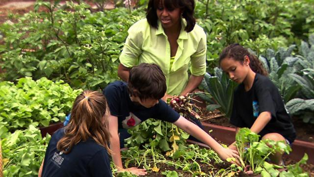 First lady, Sandy victims harvest W.H. fruits and veggies