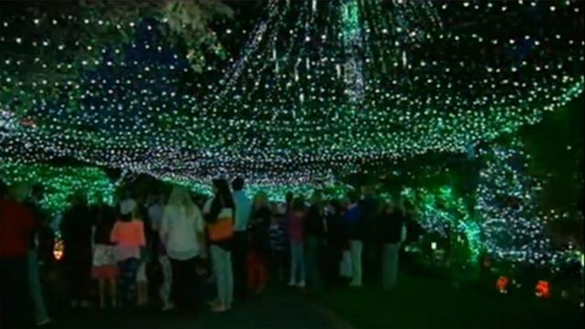Family Sets Christmas Lights World Record