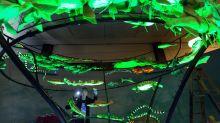 'Unseen' museum exhibit to depict glow-in-the-dark creatures