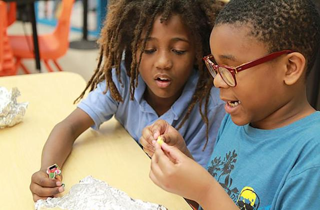 Science fund lets kids learn 3D printing, gene modification