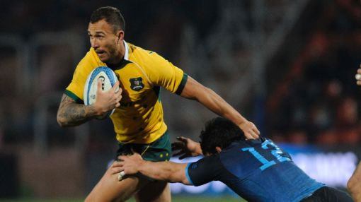 All Blacks expect wounded Wallabies to put boot in