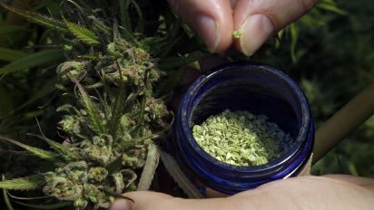 Congress passes law that could boost pot industry