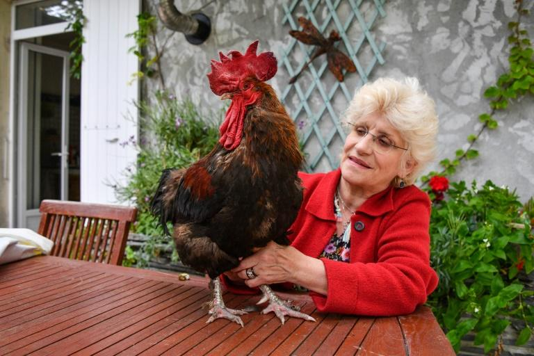 Corinne Fesseau with her rooster Maurice in the garden of her home in Saint-Pierre-d'Oleron, western France