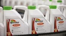 Roundup Judge Loosens His Grip on Monsanto Ghosts Haunting Bayer