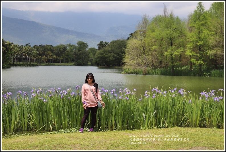 雲山水植物農場鳶尾花-2018-04-15.jpg