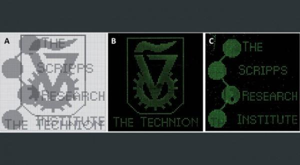 Biological computer can decode images stored in DNA chips, applications remain unclear