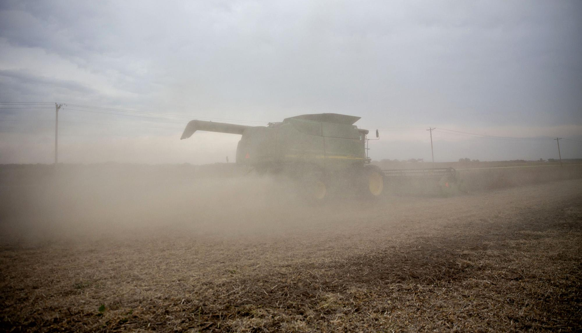 It's Not Just Corn, U.S. Farmers May Forgo Near-Record Soy Acres