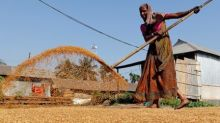 Indian rice prices ease to lowest in a year as rupee slides