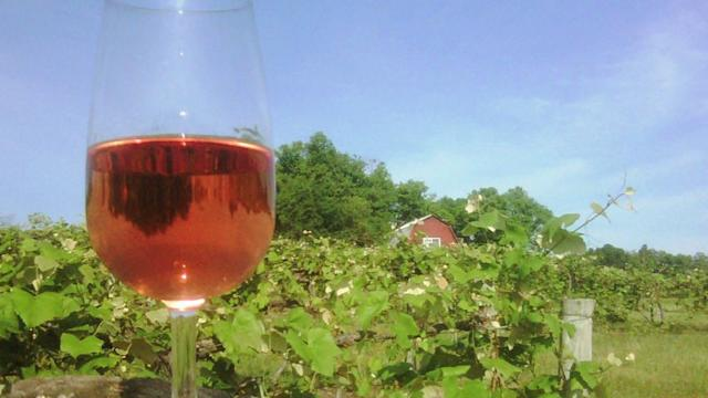Paw Paw Home to Michigan`s Wine Business