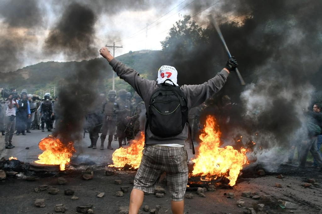 Honduras' contested presidential election has set off a wave of violence amid opposition protests like this one against President Orlando Hernandez, declared the winner after a weekslong vote count (AFP Photo/ORLANDO SIERRA)