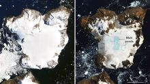 NASA Records 'Hottest Temperature' in Antarctica, Shows Shocking Images of Melting Snow