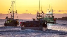 Nova Scotia First Nation launches lobster fleet amid tension on the water
