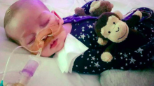 Politicians' support of Charlie Gard is 'borderline evil', says BBC presenter