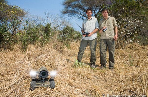 BeetleCam wildlife photography secures stellar snaps in the wilds of Tanzania