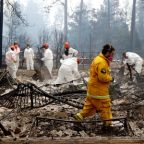 Teams 'look for skulls' in ashes of California's deadliest wildfire