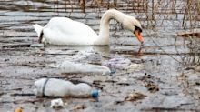 Our Rivers And Canals Get Clogged With Plastic – But You Can Do Something About It
