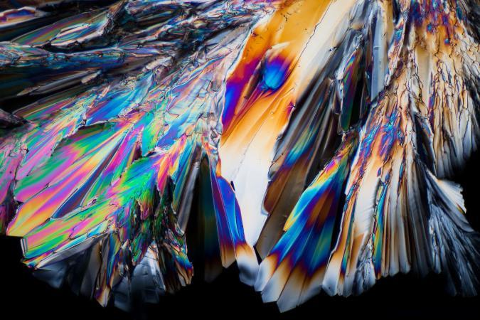 Johann Swanepoel via Getty Images