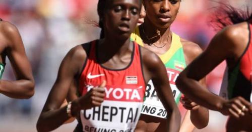 Athlé - ChM cross (F) - Championnats du monde de cross : le Kenya truste le Top 6 féminin