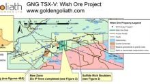 Golden Goliaths Induced Polarization Geophysical Survey on the Wish Ore Property Yields Multiple Drill targets