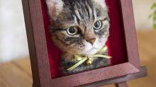 Artista crea obras artísticas de cabezas de gato súper realistas