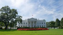 The White House is apparently overrun with flies