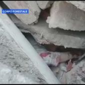 Rescuer Calms Woman Trapped Under Rubble After Italy Earthquake