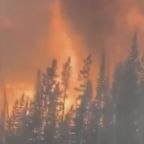 Creek Fire Torches More Than 290,000 Acres in California