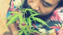 20 Marijuana Facts for 4/20