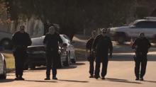 Police Search Merrylands Following Shooting of John Ibrahim's Bodyguard