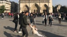 Notre Dame Fire: Woman Tries To Track Down Man And Child Pictured Hours Before Blaze