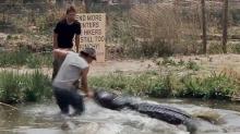 En plena transmisión en vivo se salva que un cocodrilo le arrancara el brazo