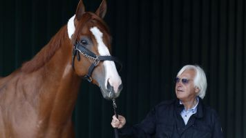 Why horse racing's days are numbered