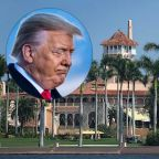 'Go Back to Moscow': Airplane Banners Near Mar-a-Lago Taunt 'Pathetic Loser' Trump